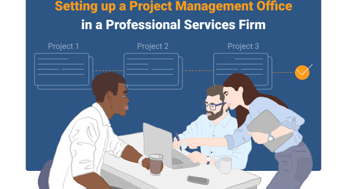 PMO in a Professional Services Firm