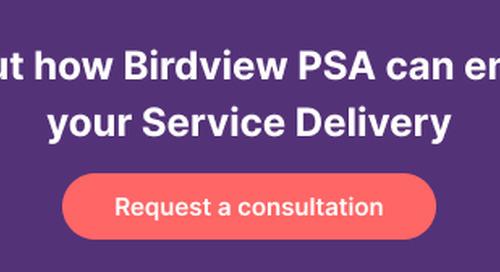 Logic Software Inc. Announces the Launch of Birdview PSA