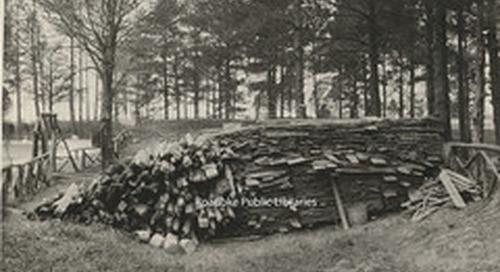 Davis 91.1g Woodpile at Pine Gardens