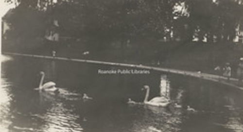 CPC 54 Elmwood Pond