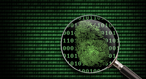8 Best Ways to Protect Your Identity