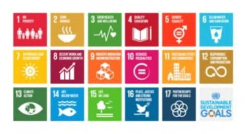 Measuring Outcomes & Achieving the Sustainable Development Goals