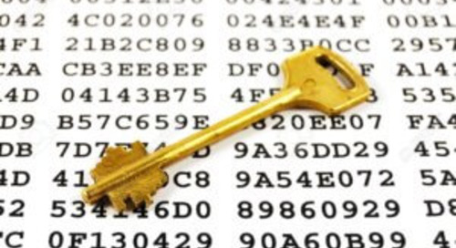 Is My Data Safe – 5 Questions Your Charity Needs to Ask