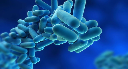 7 Keys to Real Success with Legionella Water Management Programs