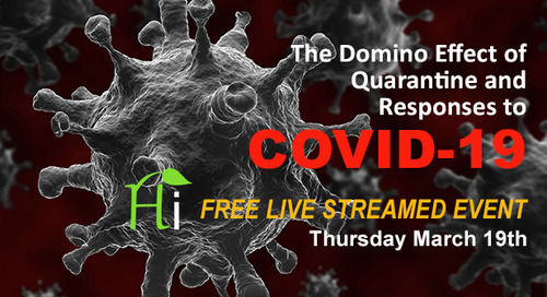 The Domino Effect of Quarantine and Responses to COVID-19: What We Know, What You Can Do