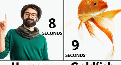 Five Reasons People Are Wired for Visual Marketing [Infographic]