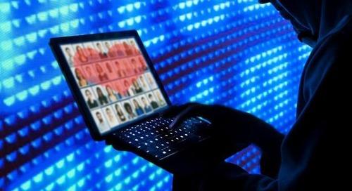 """Коммерческая монополия ProZorro: почему """"вирус Нефедова"""" может стать причиной разрушительной ..."""