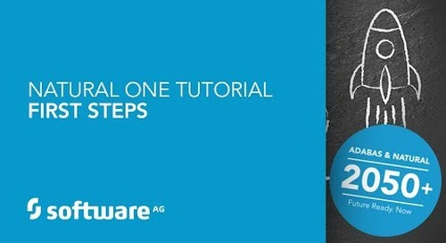Natural ONE Tutorial - First Steps
