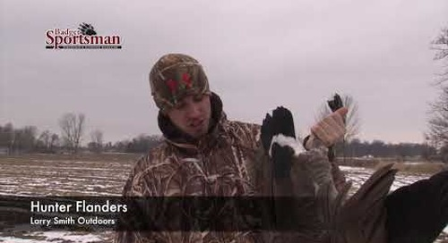 """Field Hunting Geese - """"LIVE"""" Decoy Tip"""