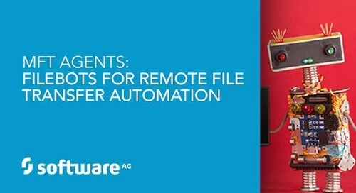Demo: MFT Agents - Filebots for Remote File Transfer Automation
