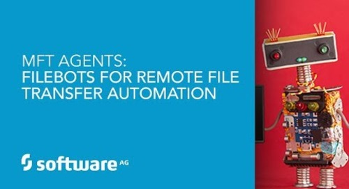 Demo: MFT Agents: Filebots for Remote File Transfer Automation