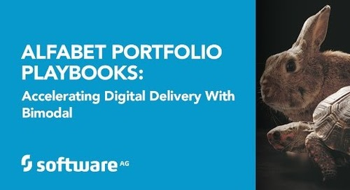 Alfabet Portfolio Playbooks: Accelerating Digital Delivery with Bimodal