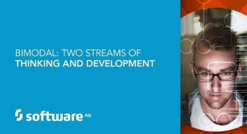 BIMODAL:  Two Streams  Of Thinking & Development