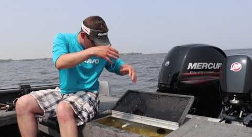 Conservation Of Our Wisconsin Walleyes