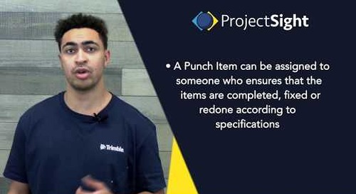 ProjectSight Training - Punch Items