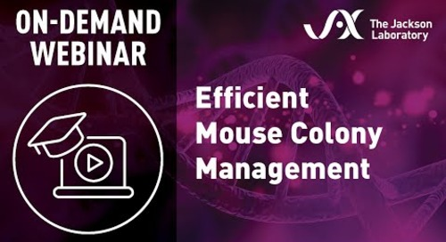 Efficient Mouse Colony Management