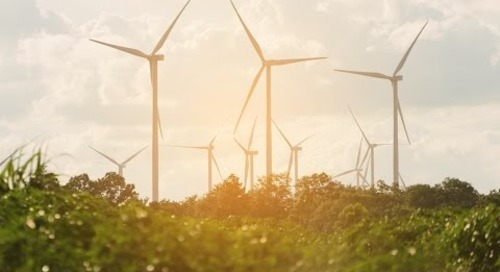 Environmental Defense Fund Finds Success with Luminate CRM