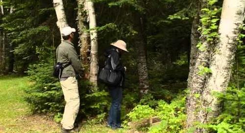 Exploring Manitoba: Hiking, Fishing and Folk