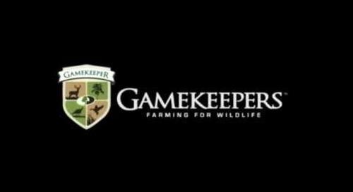 Minimize Hunting Pressure on Food Plots - GameKeeper Tip