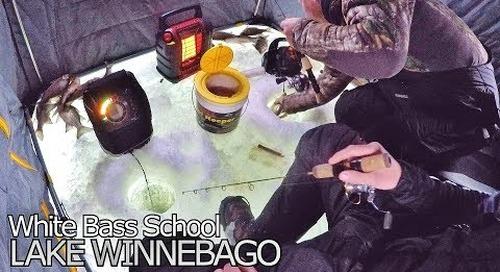 Lake Winnebago Ice Fishing - White Bass School
