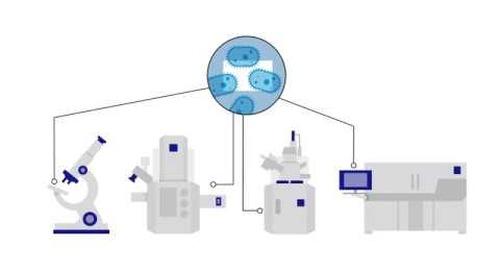 What is Correlative Microscopy?
