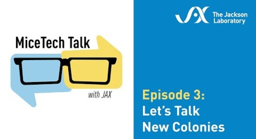 MiceTech Talk Episode 3: Let's Talk New Colonies (May 26, 2020)