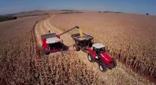 Cosechadora MF 6690 Hibrida en español (video de producto)
