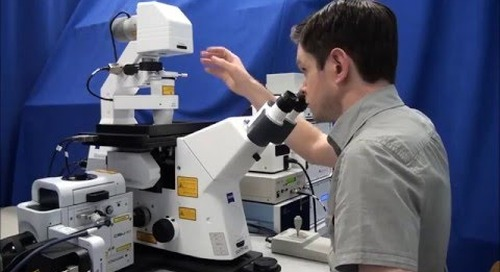 ZEISS Microscopy How-to: Set up Köhler Illumination on your ZEISS Axio Observer