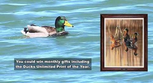 Nebraska 2019 2020 Duck Slam