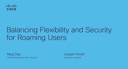 Balancing Flexibility and Security for Roaming Users