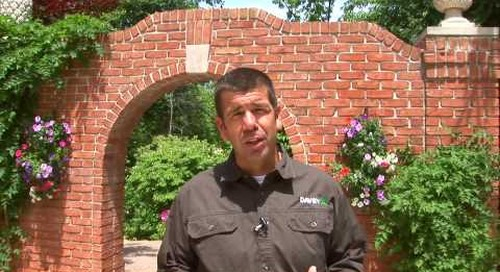 How to Hire an Arborist or Tree Service Provider
