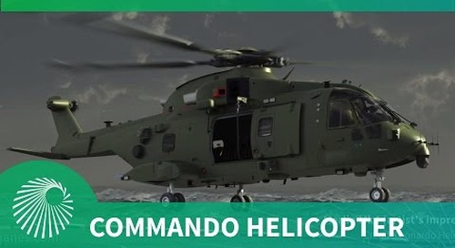 Royal Navy Commando Helicopter Force: Transition