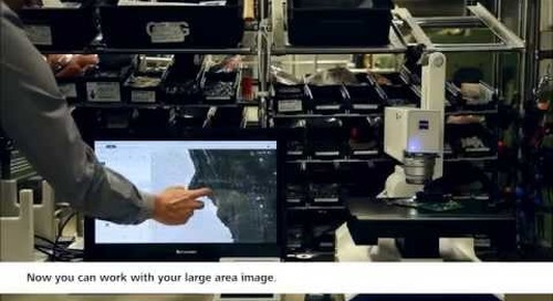 ZEISS Smartzoom 5: Large Area Image in 90 Seconds