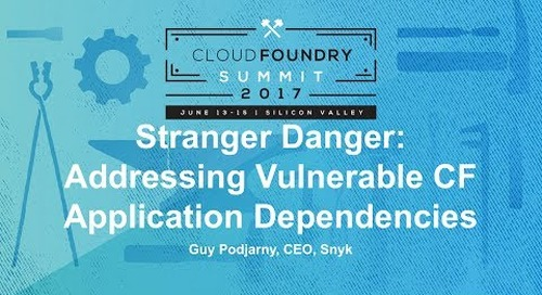 Stranger Danger: Addressing Vulnerable CF Application Dependencies