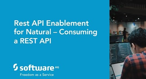 Rest API enablement for Natural – Consuming a REST API