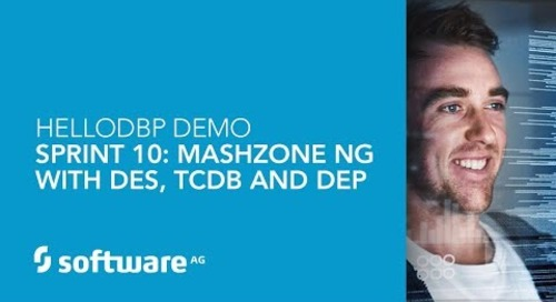 Hello DBP – Sprint 10: MashZone NG with DES, TCDB and DEP