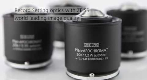ZEISS Celldiscoverer 7: Automated live cell imaging made simple
