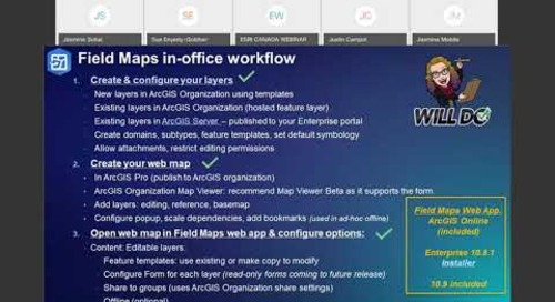 Flying Solo with ArcGIS Field Maps
