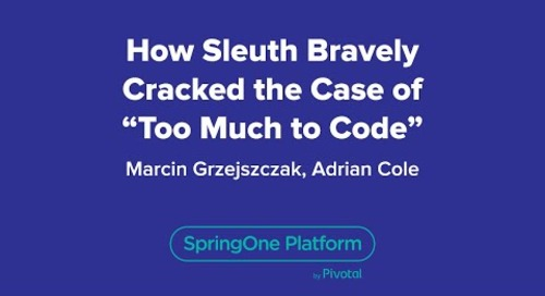 "How Sleuth Bravely Cracked the Case of ""Too Much to Code"""