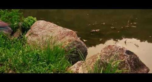 Young Filmmakers Competition - Steele Creek Park by IIya Matyushin