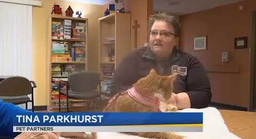 KPTV Health Watch 3/1/18 news story on the Providence ElderPlace Therapy Cat