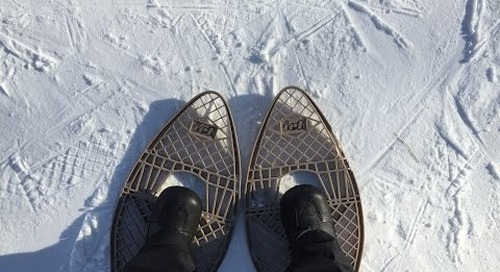 Be Friends with Winter: FortWhyte Alive