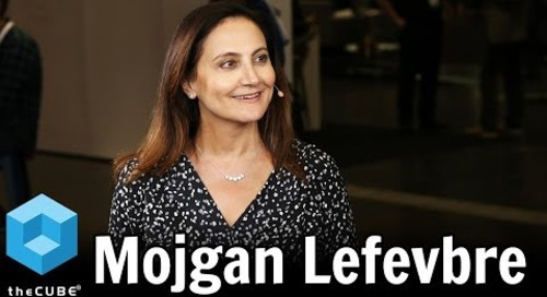 Mojgan Lefevbre, Liberty Mutual Insurance Global Specialty - Cloud Foundry Summit 2017 - #theCUBE