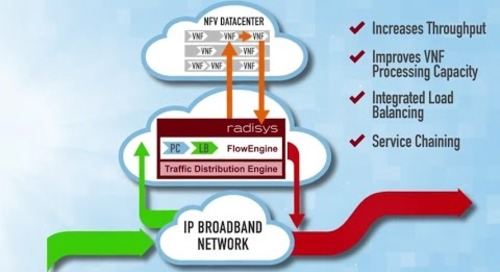 Radisys FlowEngine - Intelligent Traffic Distribution for SDN and NFV