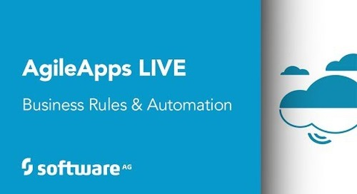 Automated business rules with webMethods Dynamic Apps, Agile Edition