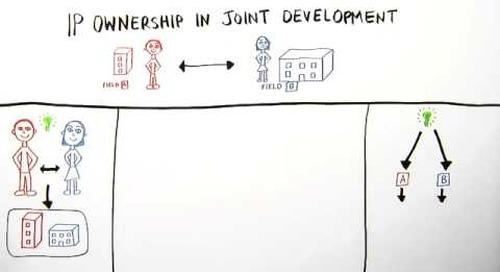 IP Ownership in Joint Development by Richard Hsu