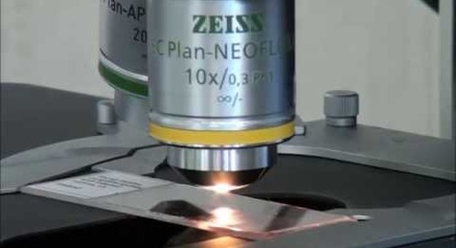 ZEISS Microscopy How-to: Align and Focus your HAL Light Source for Köhler Illumination
