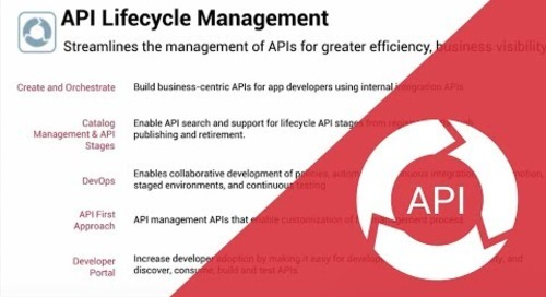 Zoom on API Lifecycle Management