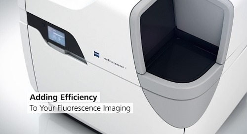 ZEISS Celldiscoverer 7: Your automated platform for live cell imaging