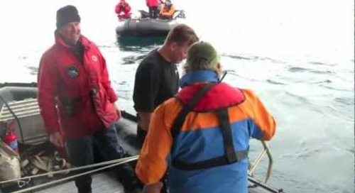 Antarctic Polar Plunge